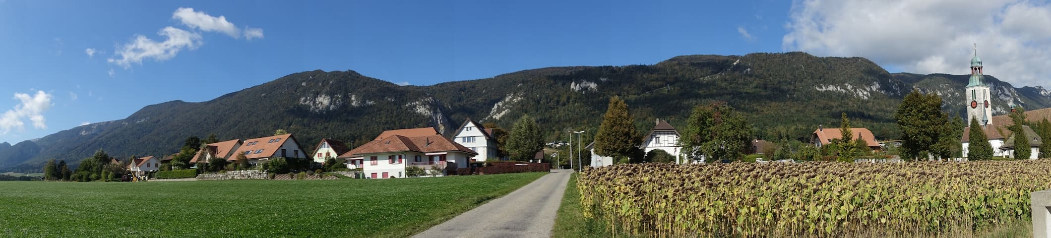Swiss village apartment with breathtaking views - Oberdorf
