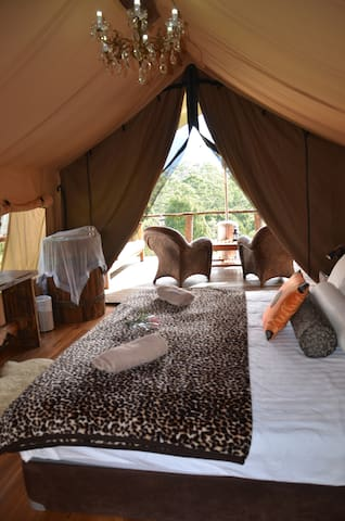 ESCAPE THE EVERYDAY - GLAMPING - Mount Burrell, near Mt Warning - Bed & Breakfast