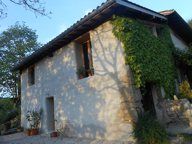 LES GRANDS TAILLIS - Saint-André-en-Royans - Casa