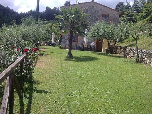 Casa in Pietra fine 800 0ttimamente - Castelbellino - Pousada