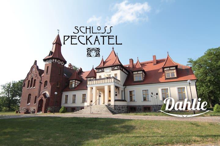 Ferien im Schloss Peckatel am Müritz-Nationalpark - Klein Vielen - Selveierleilighet