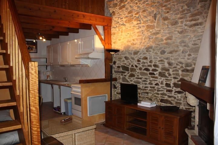 Charmant studio dans grange rénovée - Landeronde - Leilighet
