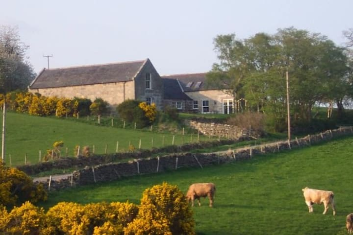 Peaceful rural setting - Monymusk - Appartement