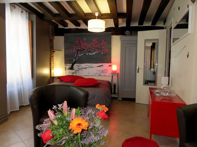 Beau studio Coeur de Ville Chartres - Chartres - Daire