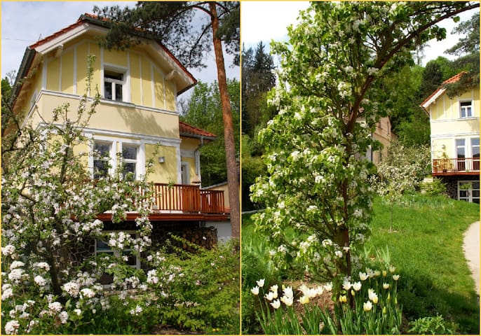 AMAZING HOUSE+BIG GARDEN -20min- Centre of PRAGUE - Prag - Hus