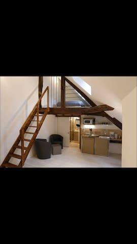Wagner Beaune - Beaune - Appartement