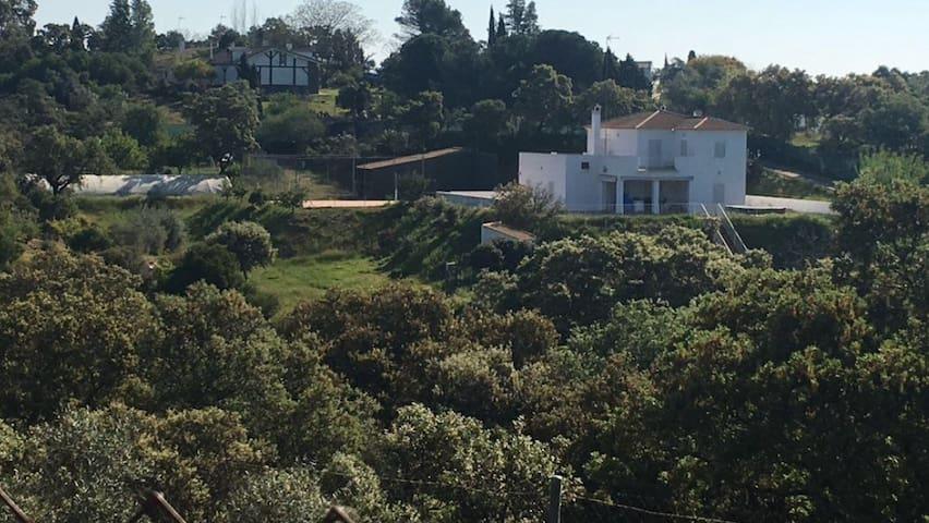 CASA RURAL EN SEVILLA. (PISCINA, AC, WIFi, ETC) - Castilblanco de los Arroyos - Chalet
