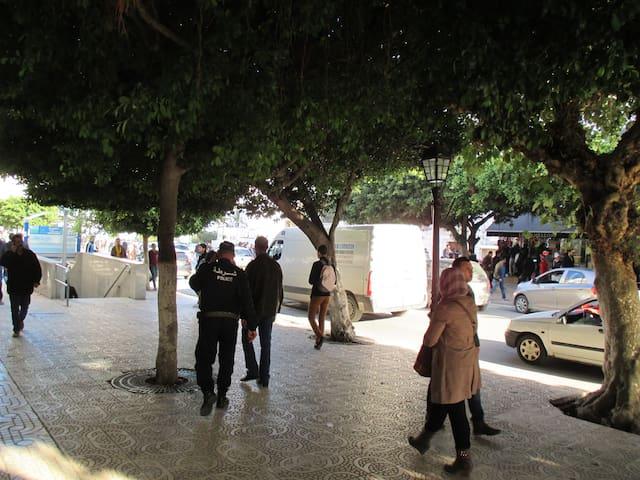 Architects Flat Central Alger  - Mohamed Belouizdad - Lägenhet