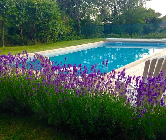 Spacious gite in converted barn with swimming pool - Bournazel - Casa