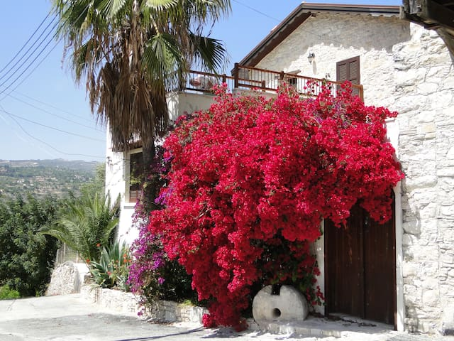 The Kato Apartment @ The Old Olive Mill Dhoros - Dhoros, Troodos - Appartement