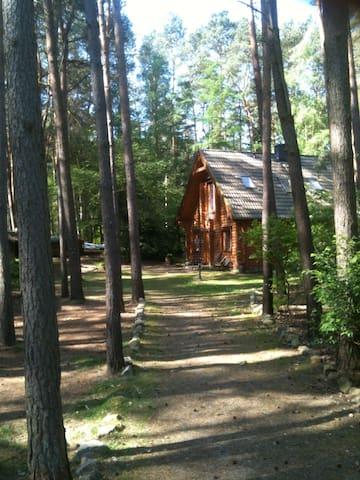 "Kiefernrundbohlenhaus ""NaturPur"" - Bardowick - Chatka"