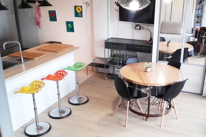 Studio 33m2 au bord du Lac du Bourget - Aix-les-Bains - Leilighet