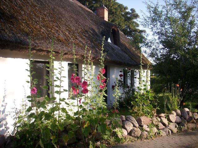 Ferienwohnung im alten Reetdachhaus auf Usedom - Benz - Leilighet