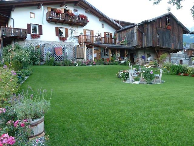 Vacanze sulle dolomiti Val di Fassa - Italiana - Lägenhet