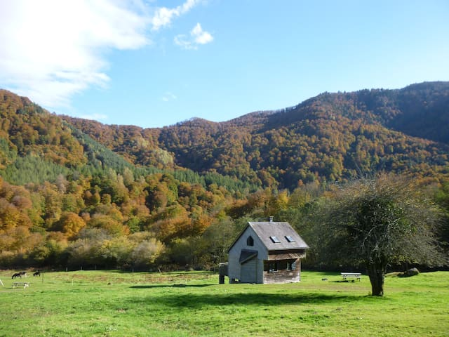 Les chalets de la forêt d'Issaux - Osse-en-Aspe - Hytte (i sveitsisk stil)