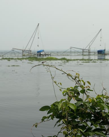 orchidlakeview homestay - Alappuzha - Hus