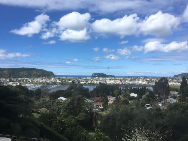 Whangamata Island View - Whangamata - Appartement