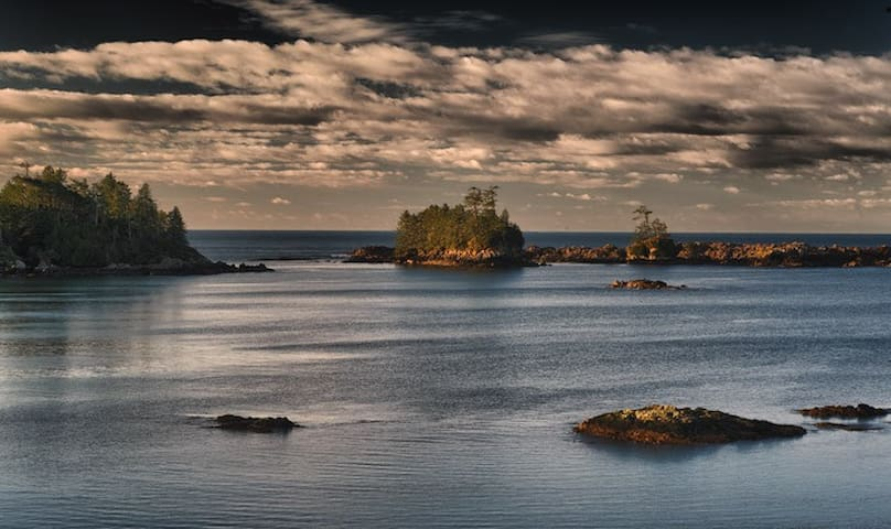 Ocean View Room- The Eagles Nest - Ucluelet