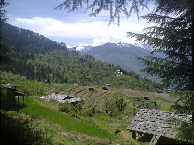 cozy single modern house at forest  - Manali - Hus
