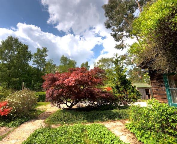 Vine Cottage in the New Forest - Sleeps up to 14 - Brockenhurst - Casa