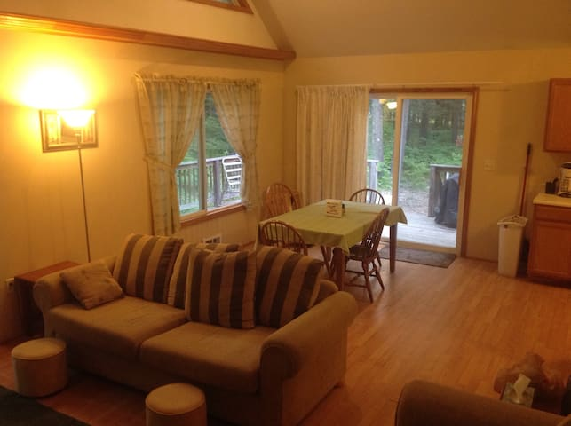 Pet friendly cottage at Higgins Lake - Roscommon - Rumah