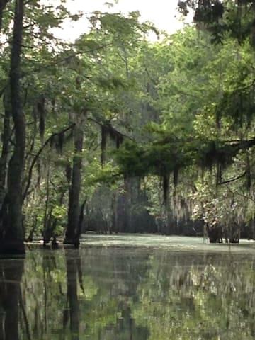 Serenity on the Swamp - Slidell - Lägenhet