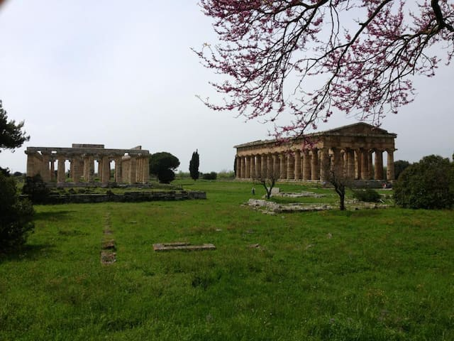 Flat near the  Archaeological Site - Licinella-Torre di Paestum - Byt