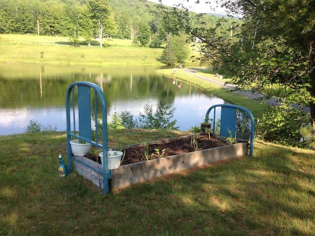 Country cottage on a large pond - Northfield - Casa