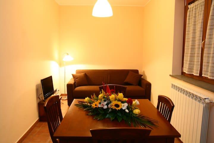 Nuova ed accogliente casa vacanze - Gambarie - Apartmen