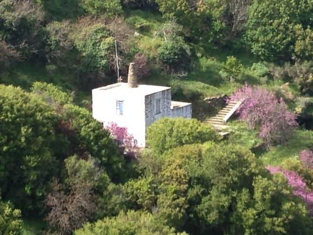 Lion's house, hiking the ancient trails of Kea - Kéa