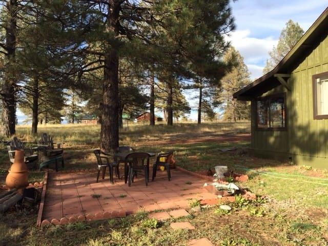 cozy cabin - Parks