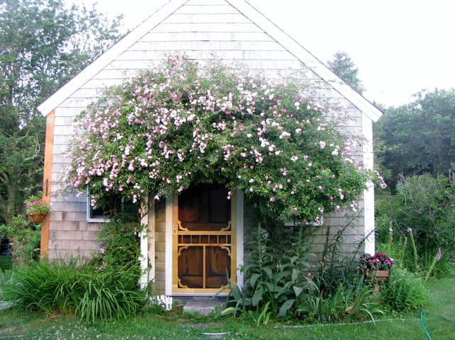 Rose Covered Cottage on Cape Cod - Eastham - Maison