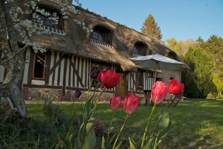 LA LANDE thatched-roof cottage - Moyaux