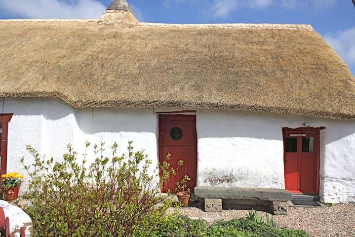 Thatch cottage retreat nr to coast. - Felinfach - House