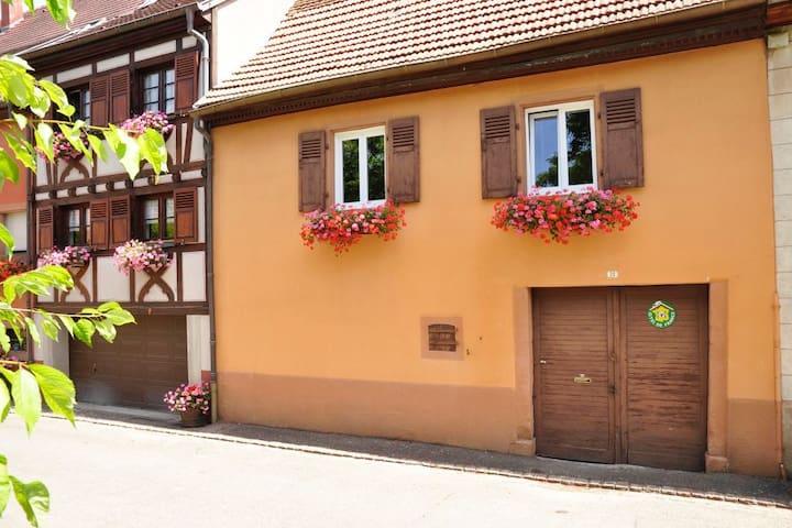 Maison typique alsacienne au coeur du village - Pfaffenheim - Alojamiento vacacional