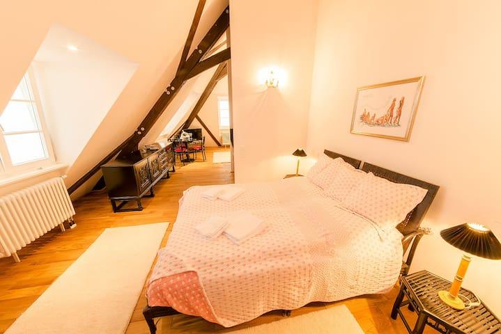 Windeck Suite im hist. Kleinod - Weinheim - Loft