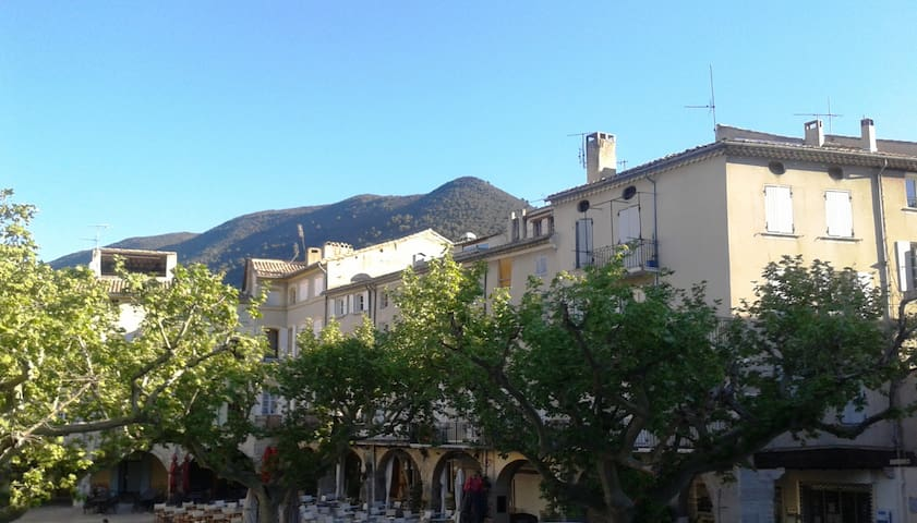 Two roomed flat - NYONS in Drôme Provençale - Nyons - Departamento