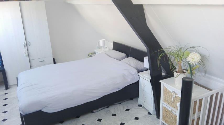 Cozy beach house 450m from the beach. - Noordwijk - Hus