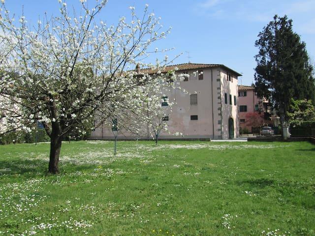 """b&b """"La Fattoria 1700"""" - San Martino In Freddana-monsagr - Bed & Breakfast"""