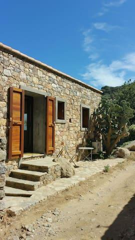 Jolie petite maison en pierre au calme - Monticello - Casa