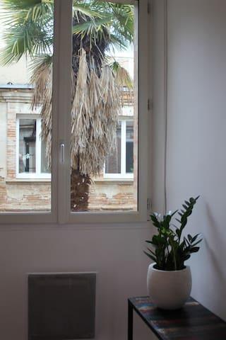 Bel appartement en centre ville - Lavaur - Departamento