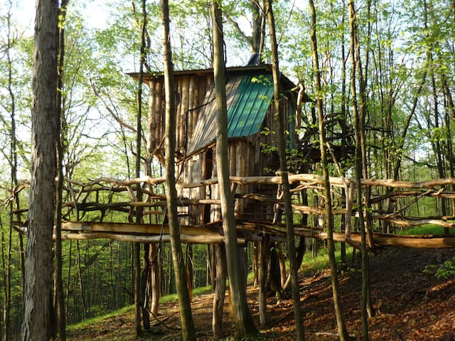 The Hermit Thrush Treehouse - West Pawlet
