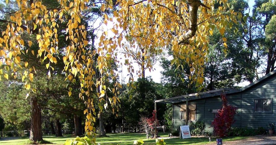 Rustic cottage on 10 acres - Badger Creek - Houten huisje
