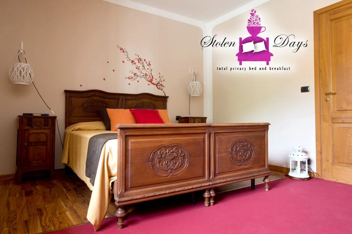 Brown room, bouble room (or 1+1 beds) in B&B villa - Novaretto - Bed & Breakfast