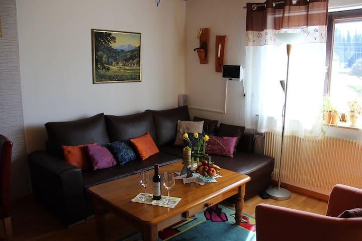 Haus Janssen-Wehrle - Titisee-Neustadt - 公寓