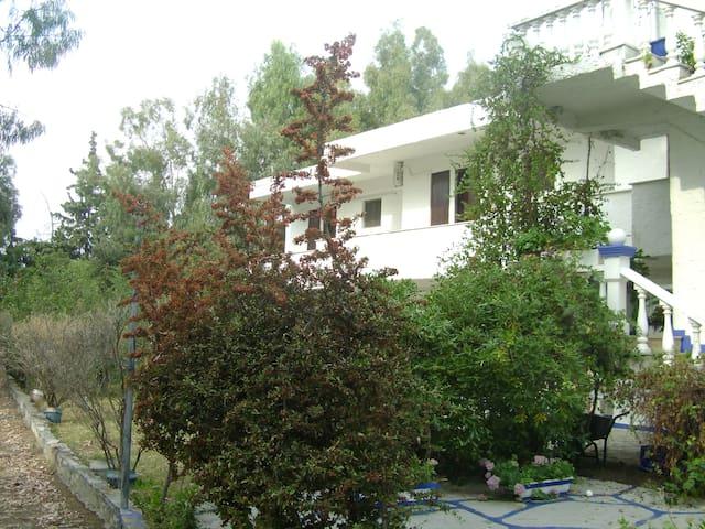 Ωραίο διαμέρισμα δίπλα στη θάλασσα - Agios Serafim - Ortak mülk