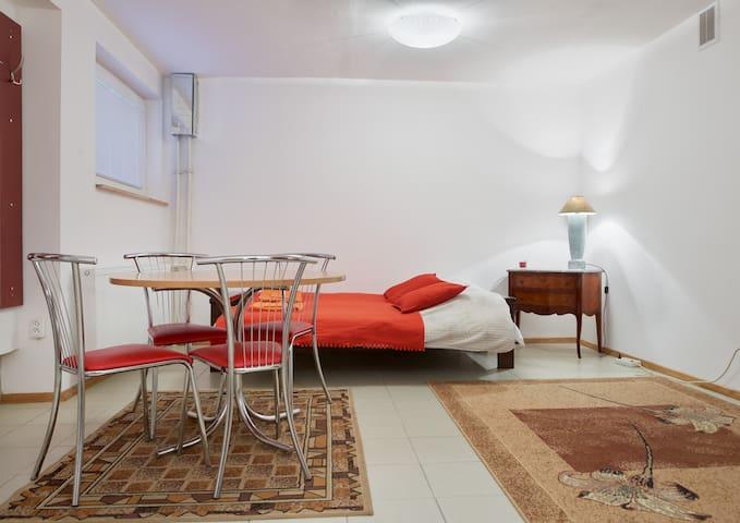 Perfectly located studio appartment - Vilnius - Daire