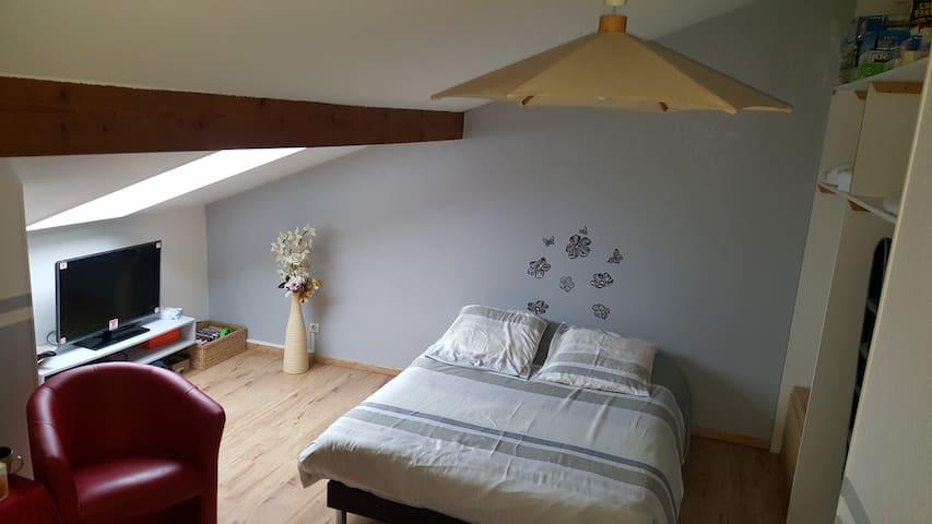 Chambre dans appartement en triplexe - Besançon - Daire