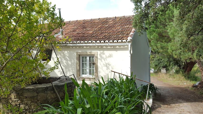 House Between Cork Oak Trees - Ribafria - 獨棟