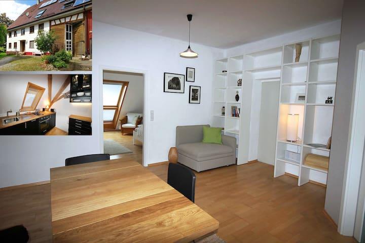 Apartment über den Dächern von Biberach - Biberach an der Riß - Daire
